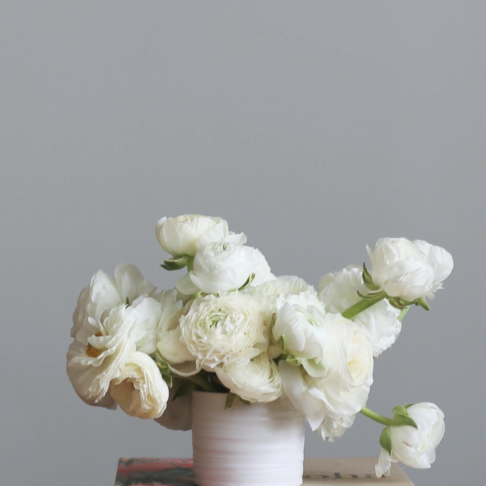 Mini All Ranunculus